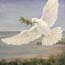 Miniature Painting White Dove, Dove of peace, Atelier for Hope Biblical Art Christian Art