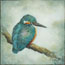Painting KingFisher II Atelier for Hope Miniature Art