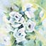 Atelier for Hope | original paintings & reproductions | Mini painting giclee white roses