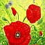 Atelier for Hope Netherlands | paintings animal&flowers | painting poppies