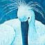 Atelier for Hope Netherlands | paintings animal&flowers | painting spoonbill