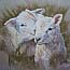 Atelier for Hope Netherlands | paintings animal&flowers | painting lambs
