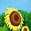 Atelier for Hope Netherlands | paintings animal&flowers | painting sunflower